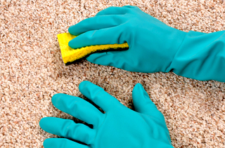 Carpet Cleaning Service Formby